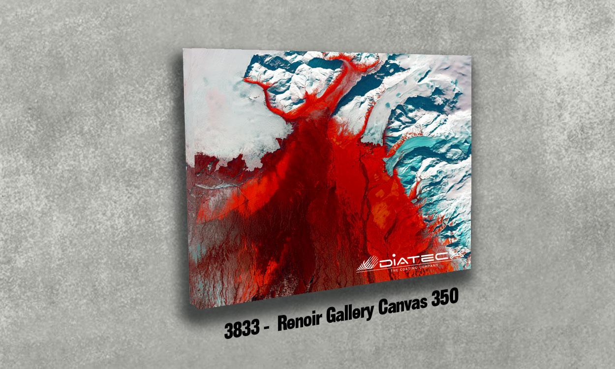 3833 - Renoir Gallery Canvas 350